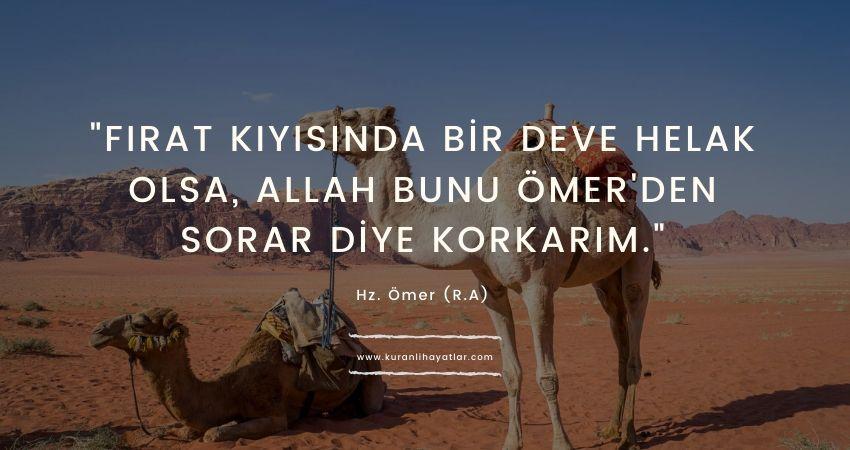 Fırat kıyısında bir deve helak olsa Allah bunu Ömer'den sorar diye korkarım Hz Ömer